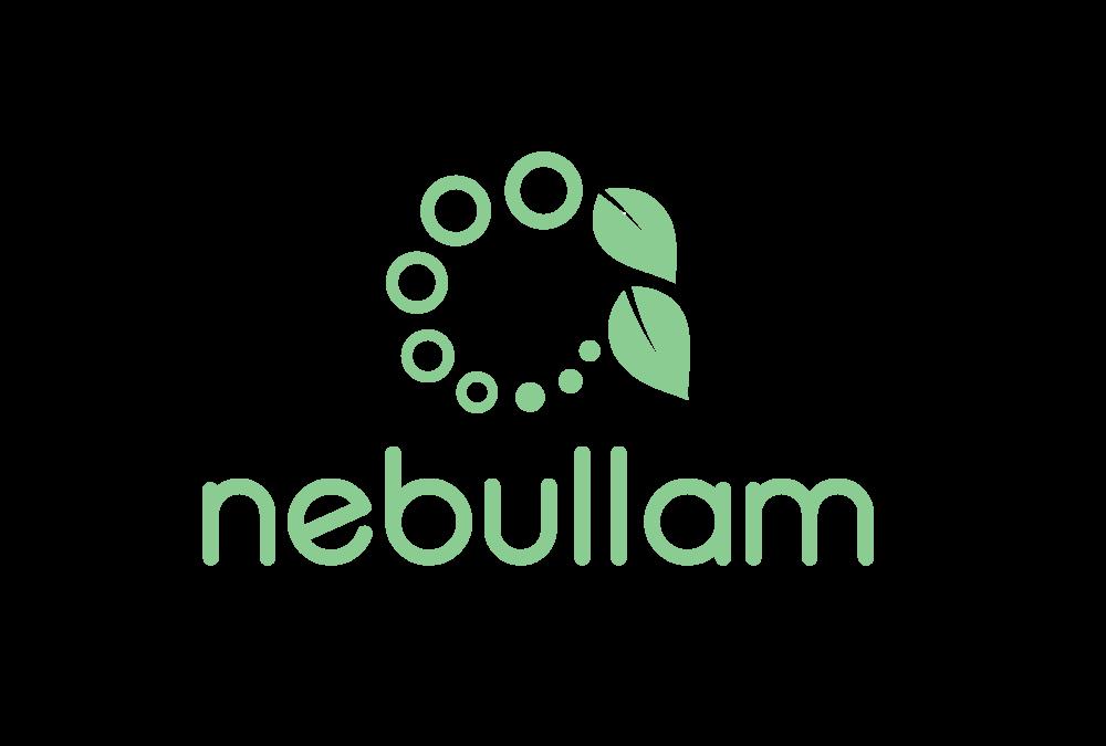 Nebullam LLC