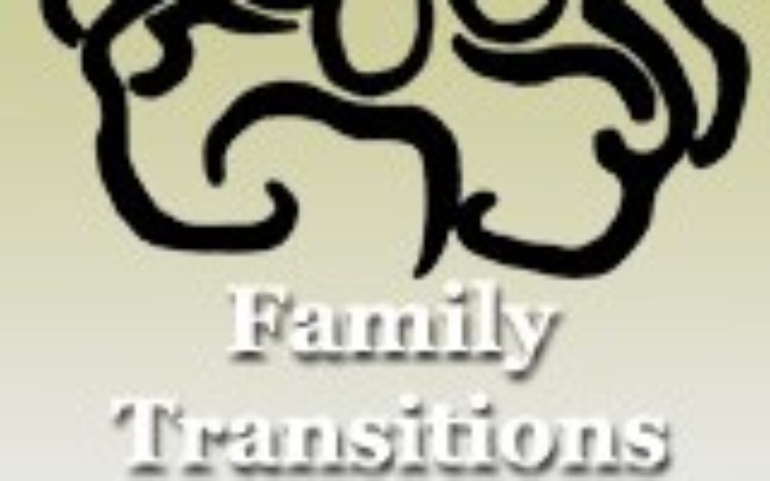 Family Transitions Project