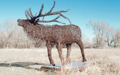 Art Sculptures Featured Around the Park